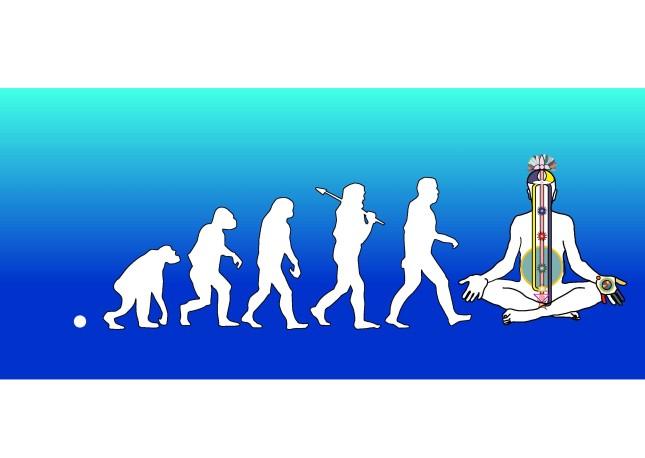 evolution steps